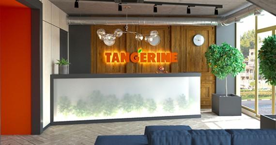 tangerine-img-2